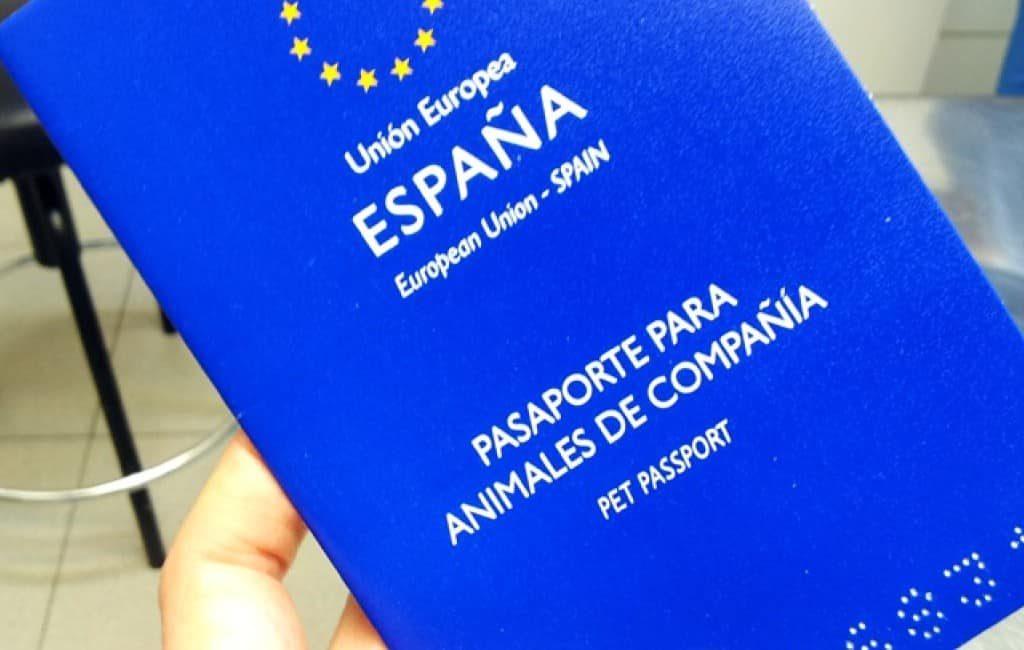 Identiteitsbewijs voor huisdieren in de maak in Spanje