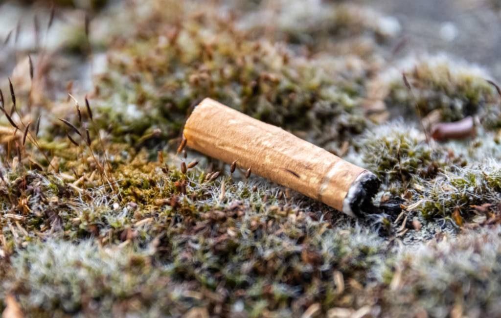Er wordt gevraagd om een rookverbod in alle Nationale Natuurparken in Spanje