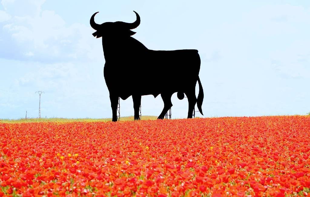Het boegbeeld van Spanje de zwarte Osborne stier is 65 jaar oud geworden