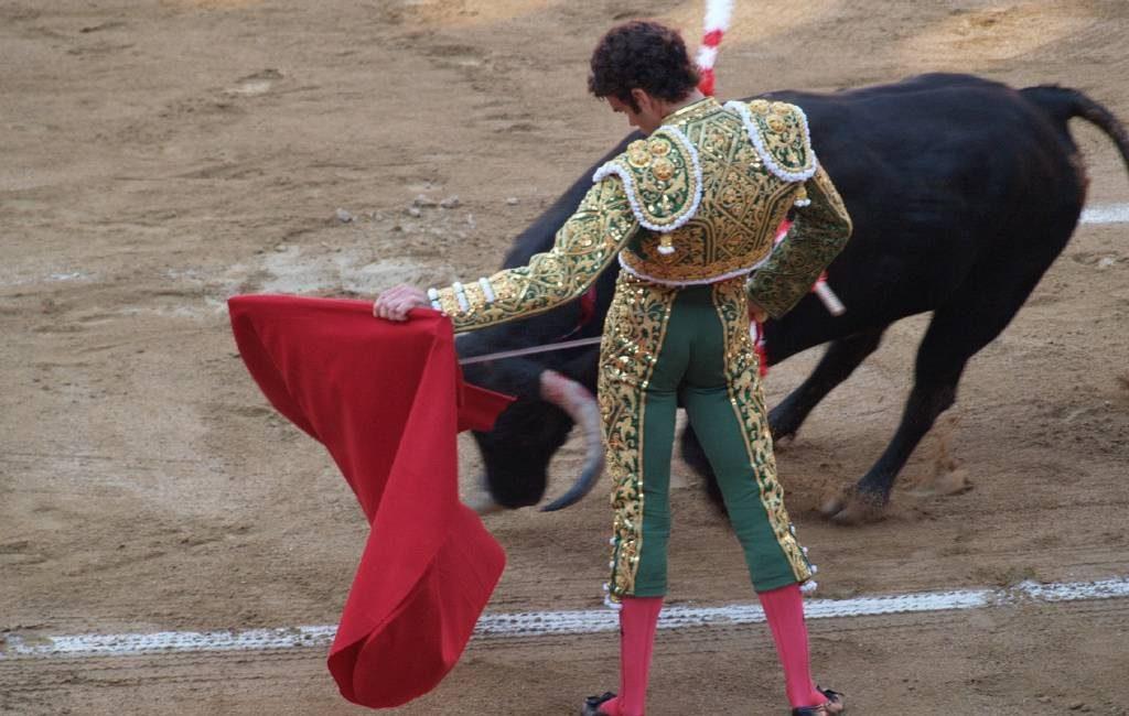 Het beroep van een stierenvechter is volgens het Hooggerechtshof geen kunst