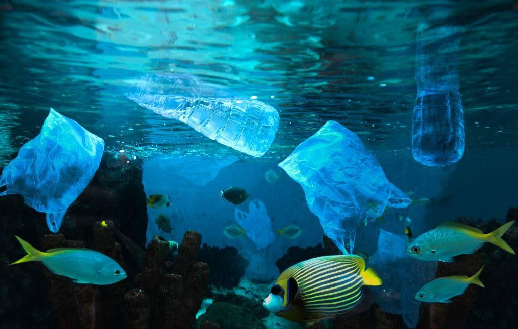 De Wereld Oceanen Dag op 8 juni en het plastic in de Spaanse zeeën